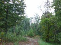 Home for sale: 270 Gut Watkins Rd., Burkesville, KY 42717