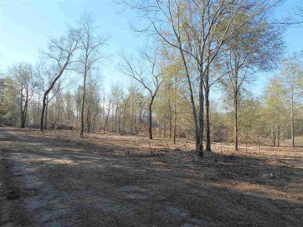 16.9 Acres Private Rd. 1363, Ariton, AL 36311 Photo 22