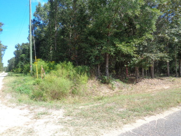 31.2 Ac Johnny Murphy Rd., Dothan, AL 36301 Photo 29