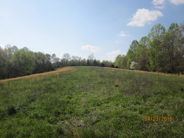 12845 Liberty Rd., Elk Horn, KY 42733 Photo 26