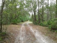 Home for sale: 860 Buckles Rd., Pierson, FL 32180