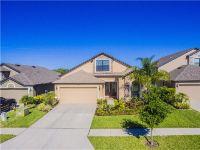 Home for sale: 6649 Wild Elm Ct., Wesley Chapel, FL 33545