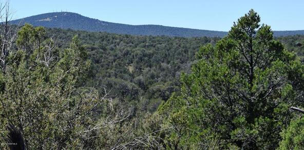 264 Sierra Verde Ranch, Seligman, AZ 86337 Photo 26