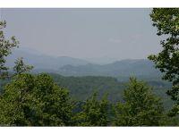 Home for sale: 1073 Corsica Ln., Saluda, NC 28773