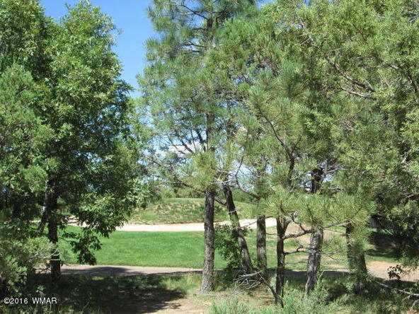 4170 W. Sugar Pine Loop, Show Low, AZ 85901 Photo 5