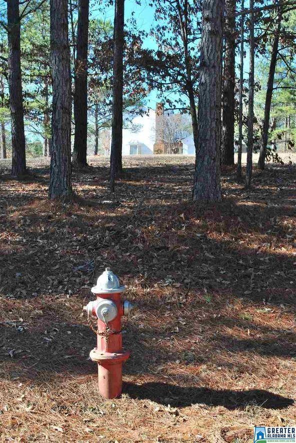 296 Deer Run Dr., Centreville, AL 35042 Photo 23