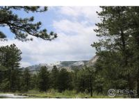 Home for sale: 179 Green Ridge Rd., Drake, CO 80515