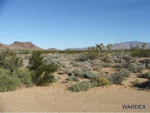 3529-D Arroyo Rd., Yucca, AZ 86438 Photo 7