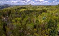 Home for sale: Turkey Trot, Morganton, GA 30560
