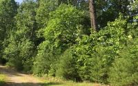 Home for sale: 1.87 Acres Gobblers Knob, Suches, GA 30572