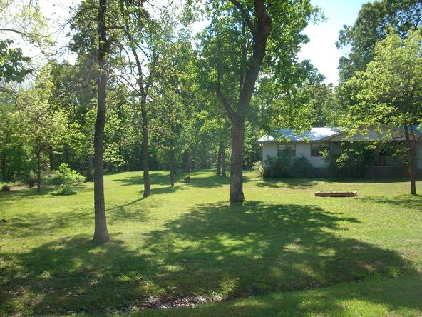 52 White Oak Cir., Highland, AR 72542 Photo 5