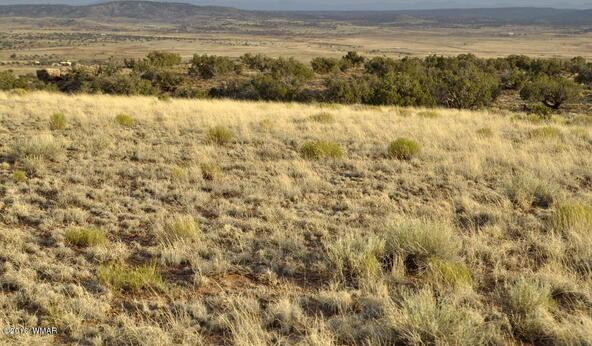 297 Woodridge Ranch, Concho, AZ 85924 Photo 11