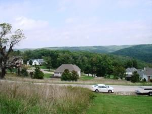 Lot 50 L 50 Whitetail Dr., Walnut Shade, MO 65771 Photo 16