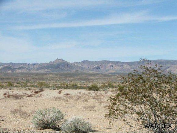 16775 S. Douglas Ln., Yucca, AZ 86438 Photo 2