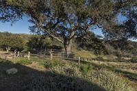 Home for sale: 132 Hollister Ranch Rd., Gaviota, CA 93117
