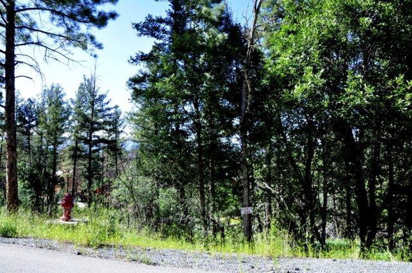 224 Cummings Dr., Ruidoso, NM 88345 Photo 9