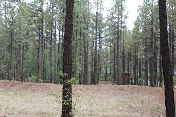 4045 Buck Springs Rd., Pinetop, AZ 85935 Photo 18