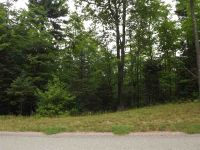 Home for sale: 104 Hardwood, Negaunee, MI 49866