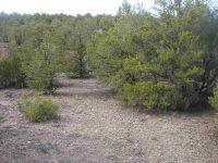 Home for sale: * Tatanka Trail, Ranchos De Taos, NM 87557