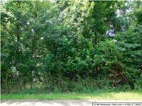 Home for sale: 4177 Starlanding Rd., Nesbit, MS 38651