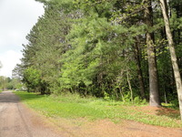 Home for sale: 1.6 Acres On Otter Lake, Elcho, WI 54428