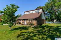 Home for sale: 621 Cove Point Dr., Riverside, AL 35135