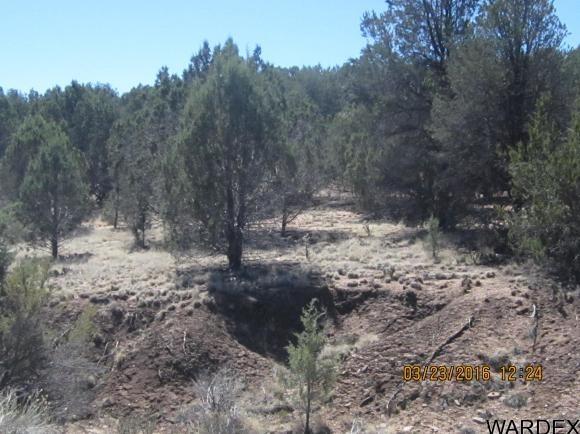 33307 W. El Caballo Rd., Seligman, AZ 86337 Photo 14
