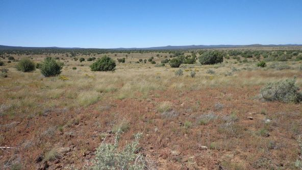 645 Westwood Ranch Lot 645, Seligman, AZ 86337 Photo 24
