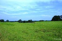 Home for sale: 160 Greenway Farm Rd., Seneca, SC 29672