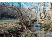 Home for sale: 60 Acres Trentham Hollow Rd., Parrottsville, TN 37843