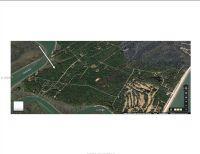 Home for sale: 0 Benjies Point, Daufuskie Island, SC 29915