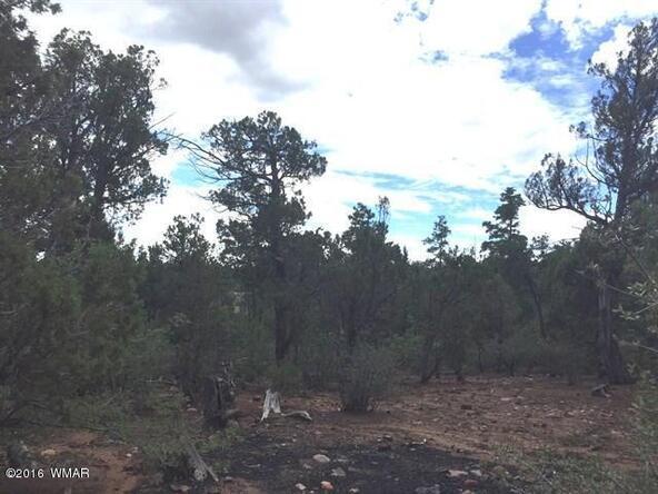 800 E. Pine Oaks Dr., Show Low, AZ 85901 Photo 7
