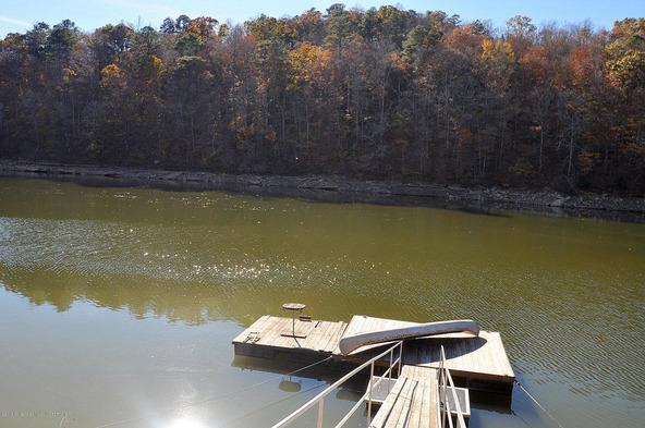491 County Rd. 4028, Arley, AL 35541 Photo 12