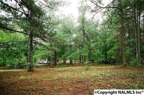 1041 County Rd. 277, Fort Payne, AL 35967 Photo 10