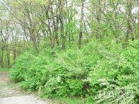 Home for sale: 342 Hiawatha Ct., Sparland, IL 61565