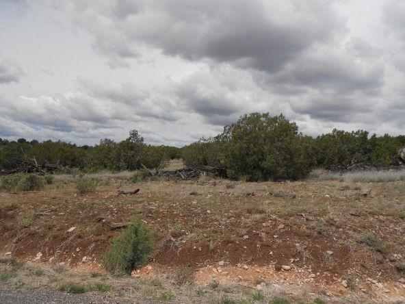 4650 W. Dillon Wash Rd., Prescott, AZ 86305 Photo 3