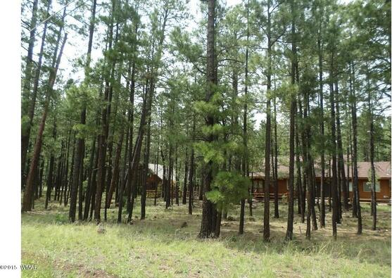 7828 Buck Springs Rd., Pinetop, AZ 85935 Photo 8