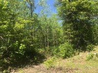Home for sale: Lot 3 Graf Rd., Tomahawk, WI 54487