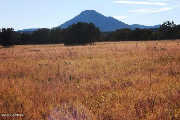 130 Bunny View, Ash Fork, AZ 86320 Photo 3