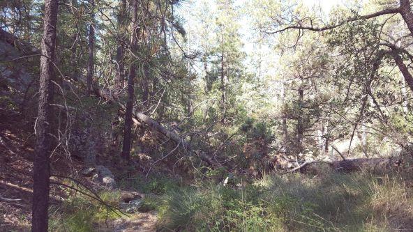2655 E. Preddy, Prescott, AZ 86305 Photo 21