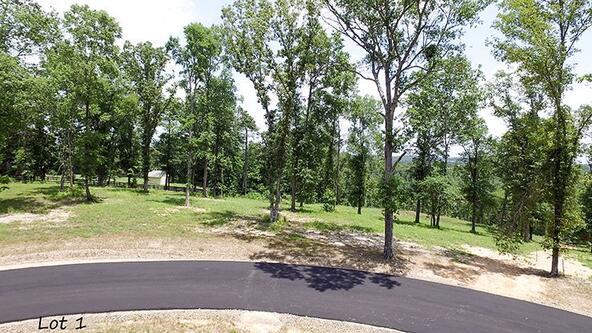 162 Ridgehaven, Hot Springs, AR 71913 Photo 22