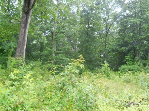 77 Close Lake Dr., Nancy, KY 42544 Photo 2