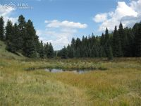 Home for sale: 3800 N. Elk Ridge, Divide, CO 80814