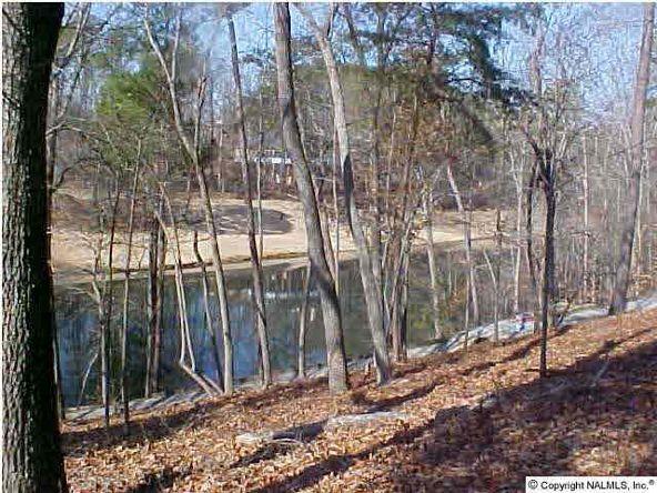 1070 Heritage Dr., Guntersville, AL 35976 Photo 4