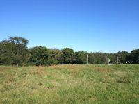 Home for sale: Lot 910 Lake Wildwood Dr., Varna, IL 61375