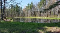 Home for sale: 70 Acres Mol Apple Rd., Pittsville, WI 54466