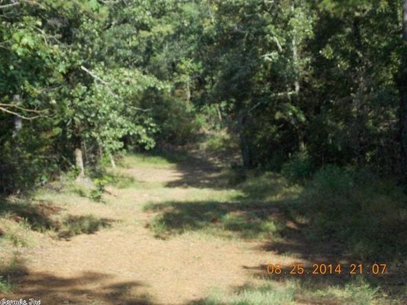 1105 Walnut Grove Rd., Hector, AR 72843 Photo 20
