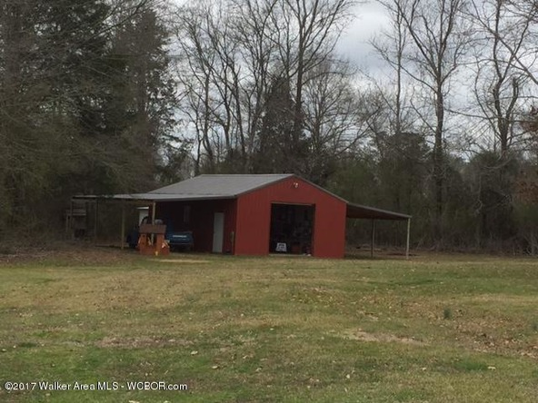 1873 County Rd. 93, Bankston, AL 35542 Photo 10