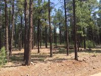 Home for sale: 9584 Sierra Springs Way, Pinetop, AZ 85935