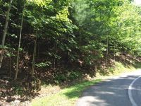 Home for sale: Lot #206 Sugar Maple, Mills River, NC 28759